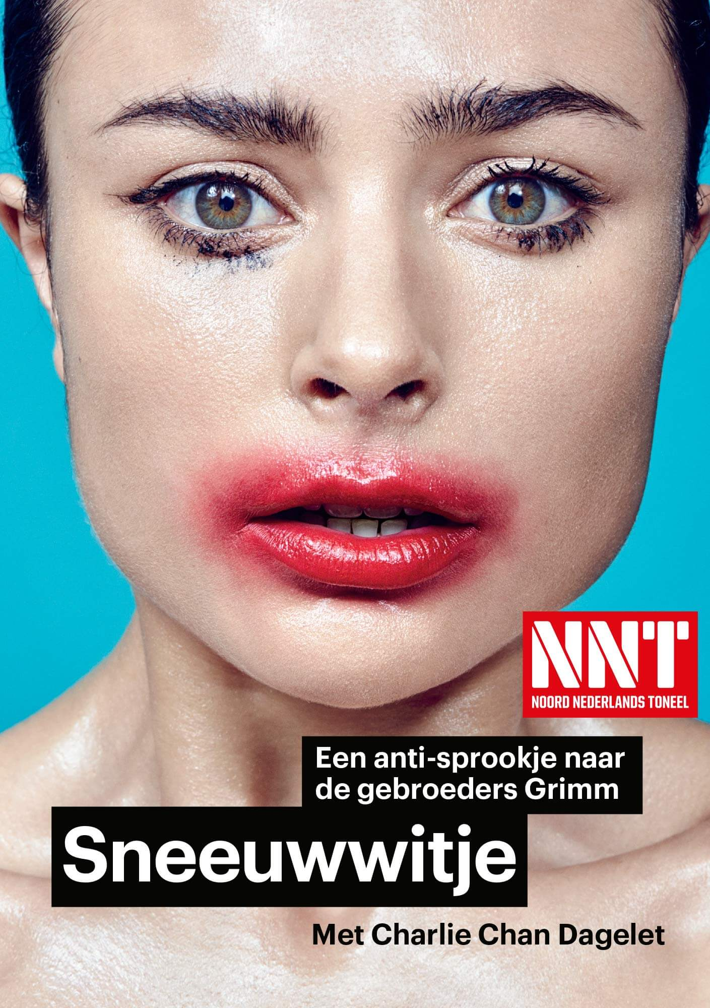 NNT Sneeuwwitje Affiche